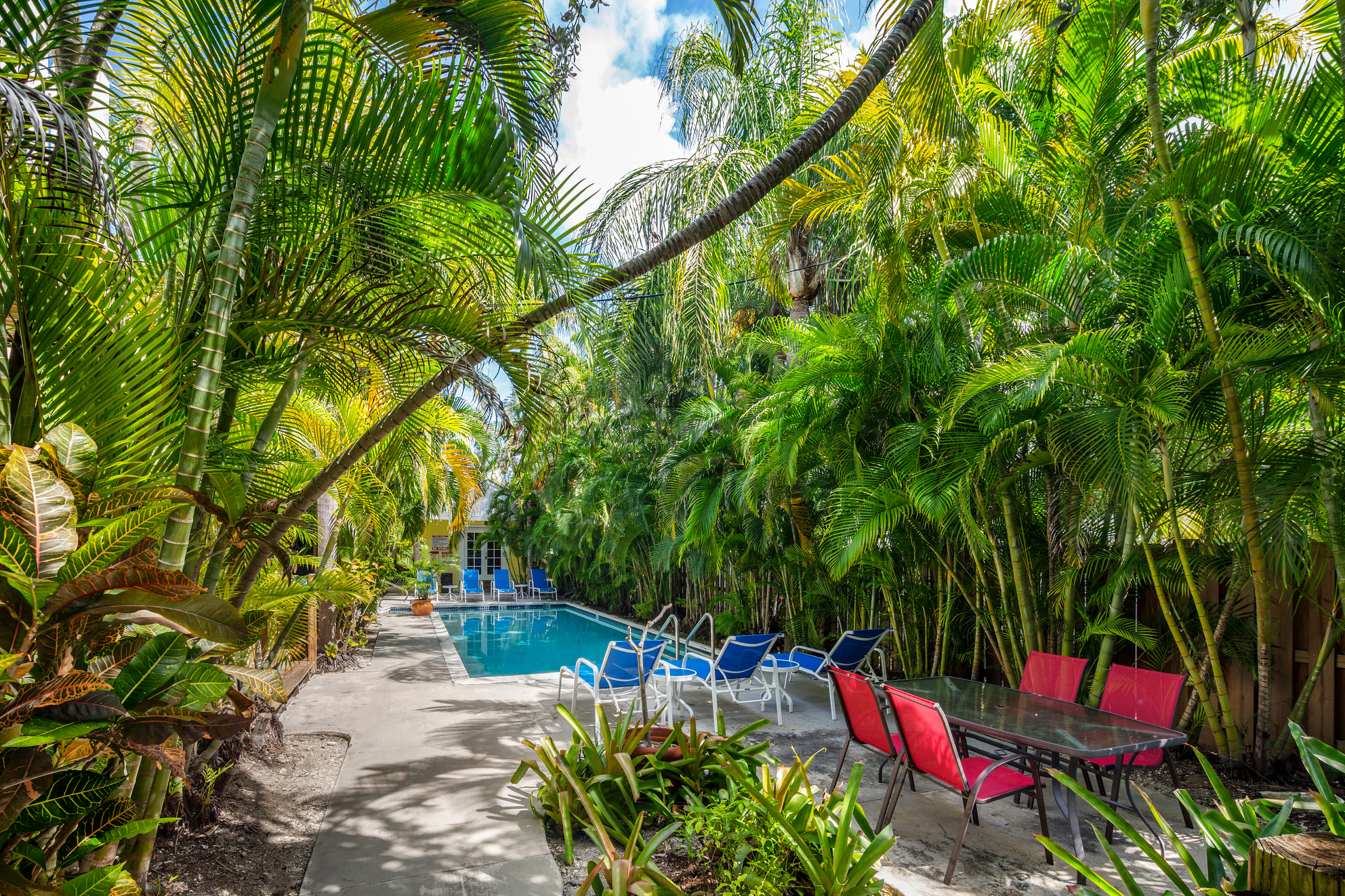 812 South St. #4, Key West_Pool View 1